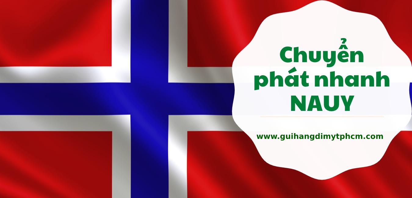 gửi hàng đi nauy - Gửi hàng đi Nauy ( Norway ) - Dịch vụ FLY, FedEx , TNT...
