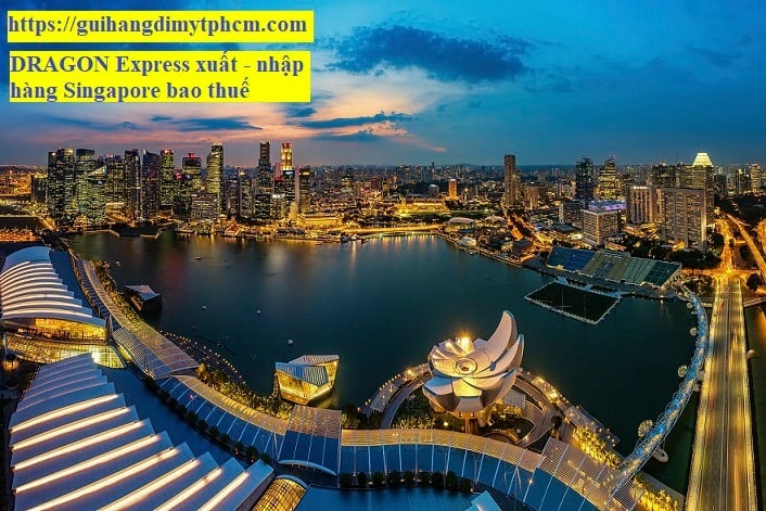 gửi hàng đi singapore tại tphcm - Gửi hàng đi Singapore - DRAGON Express ( Bao Thuế )