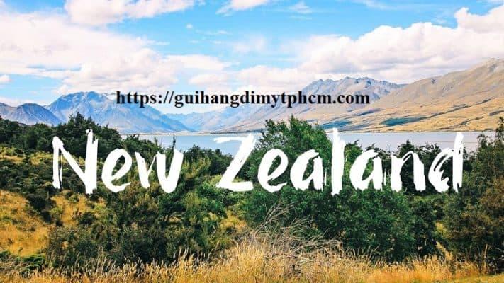 maxresdefault 711x400 - Gửi hàng đi New Zealand- DRAGON Express (Bao thuế)