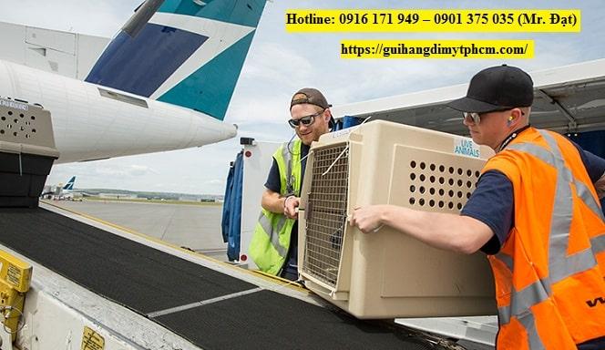 180309 restrictions 737x426 - Gửi hàng đi Mỹ tại quận 5- Nhanh chóng, an toàn