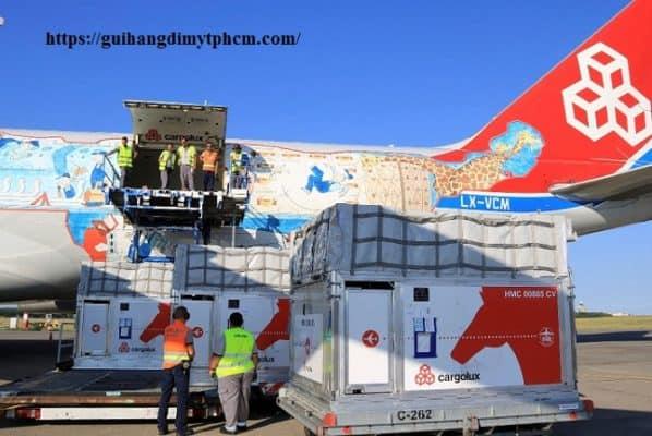 Budapest Airport plans animal facilities after horse transport 598x400 - TTHC đối với hàng hóa XK, NK, quá cảnh