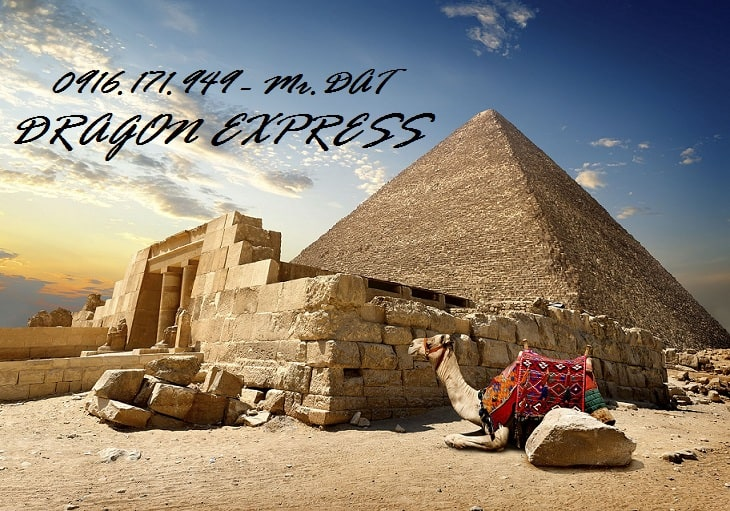 ew egypt cairo7 - Gửi hàng đi Ai Cập(Egypt) - DRAGON Express